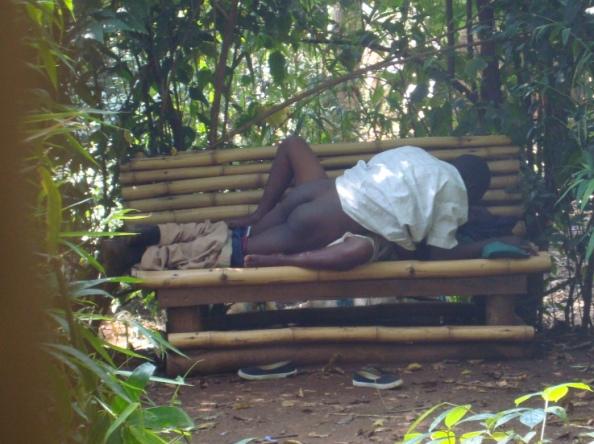 MULIRO Gardens Part 3: New Photos | Mombasa411 Blog