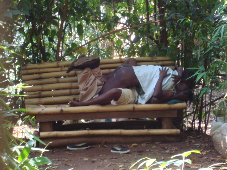 MULIRO Gardens Part 3: New Photos