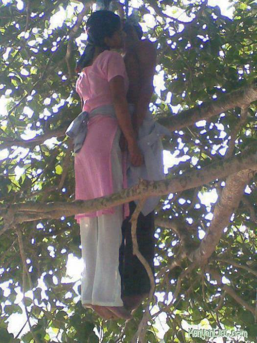 couple commit suicide � by hanging together in a tree